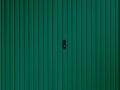 Carlton Side Hinged (Moss Green)
